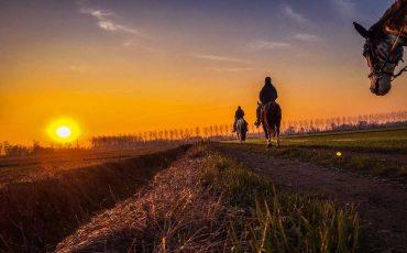 VIsitMelendugno_Passeggiate-a-cavallo